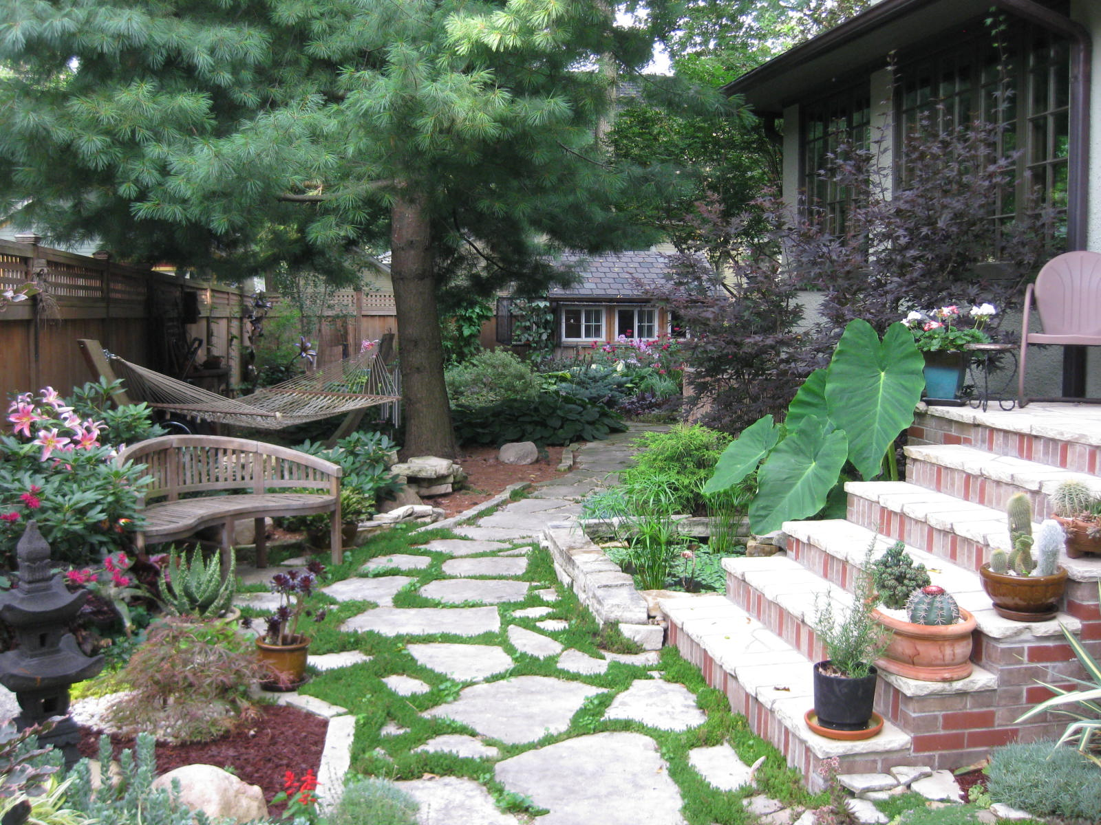How to Make an Indoor Plant Conservatory in Iowa | Coz
